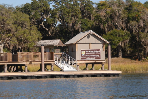 black singles in sapelo island The barrier islands of the south atlantic coastline have for years held a deep attraction for all who have come into contact with them few, however, can compare with the mystique of sapelo.